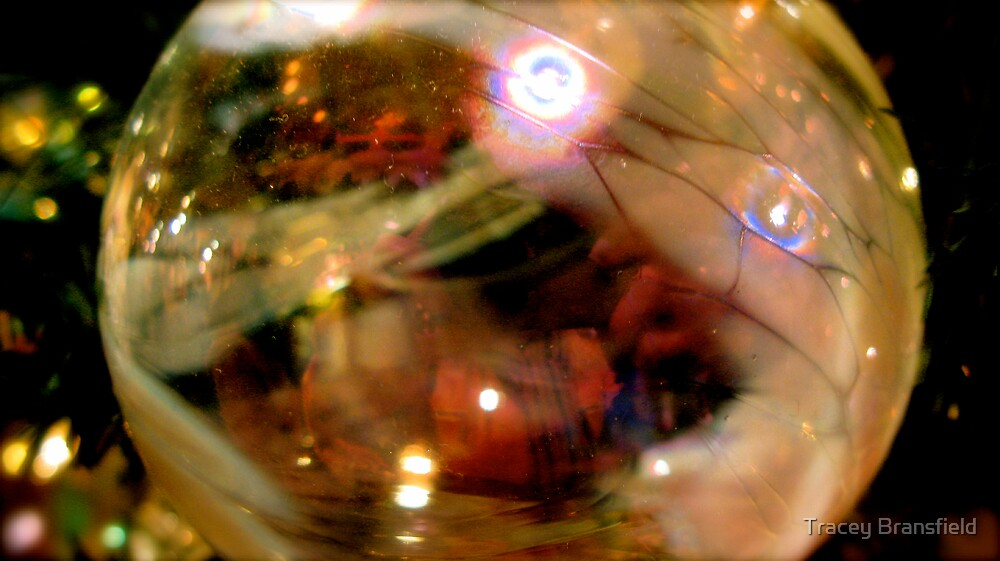 Ornamental Ball by Tracey Bransfield