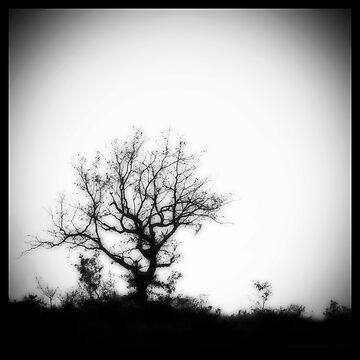 Stand alone by sidh