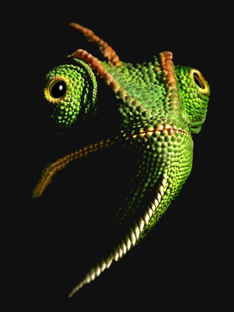chameleon II by blepharopsis