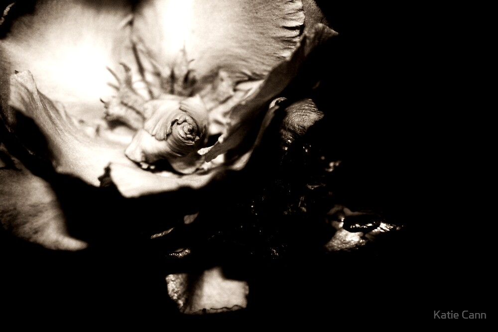 Flower With Character by Katie cann