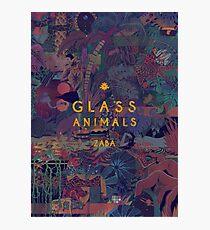 Glass Animals Zaba Photographic Print