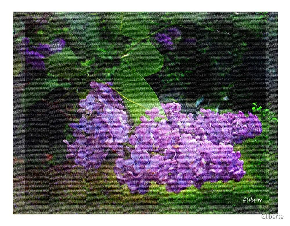 Lilac texturized by Gilberte