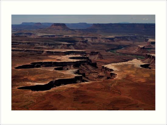 Canyonlands Moonscape by J. D. Adsit