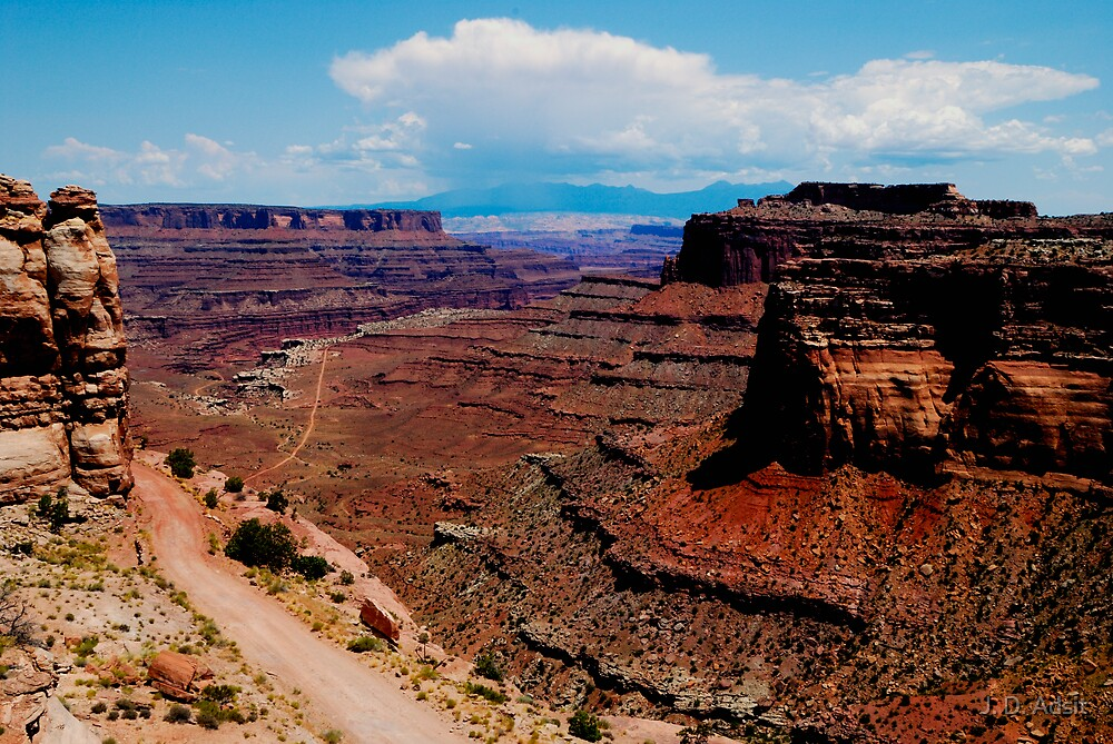 Canyonlands Red Rock by J. D. Adsit