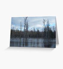 Freezing Swamp Greeting Card