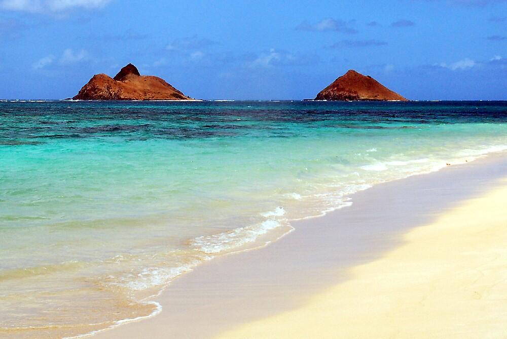 Islands by dcruzin