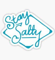 Stay Salty Sticker