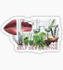Self Destructive Sticker