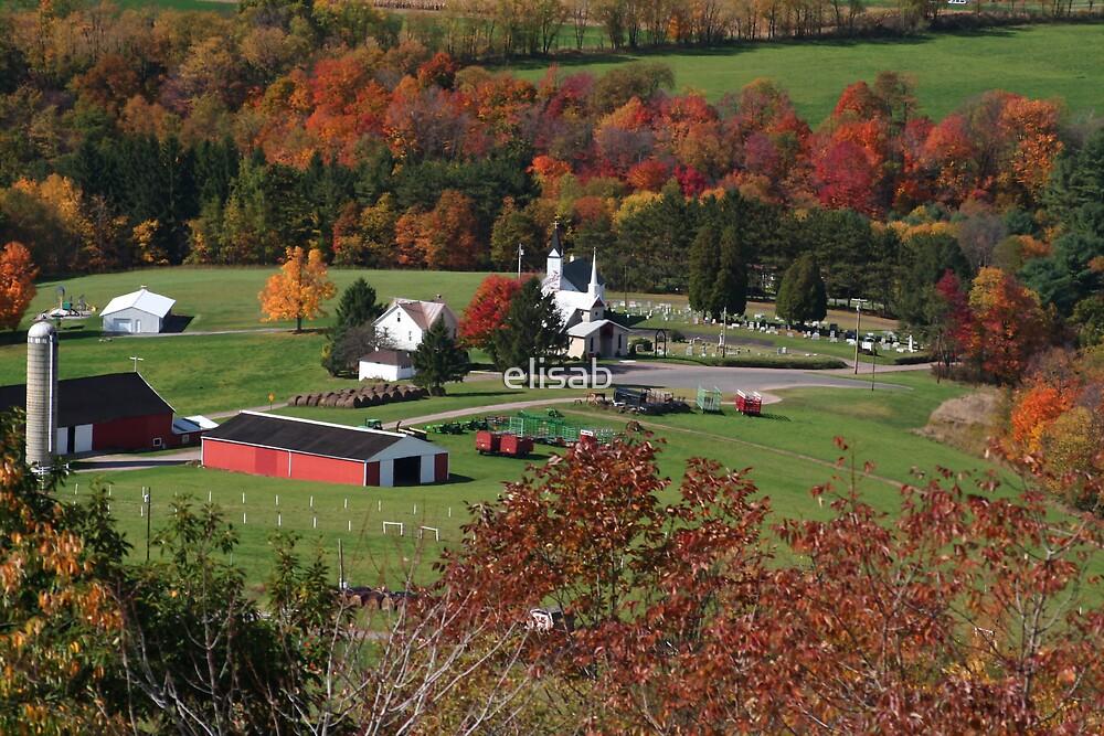 Red barn on the farm by elisab