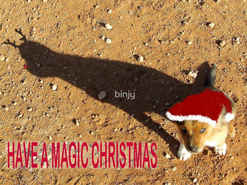Magic Christmas by binjy