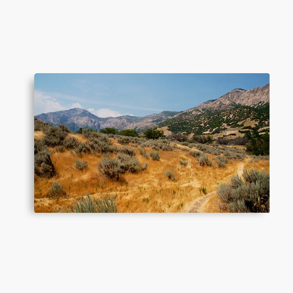 High Summer in Ogden Canvas Print