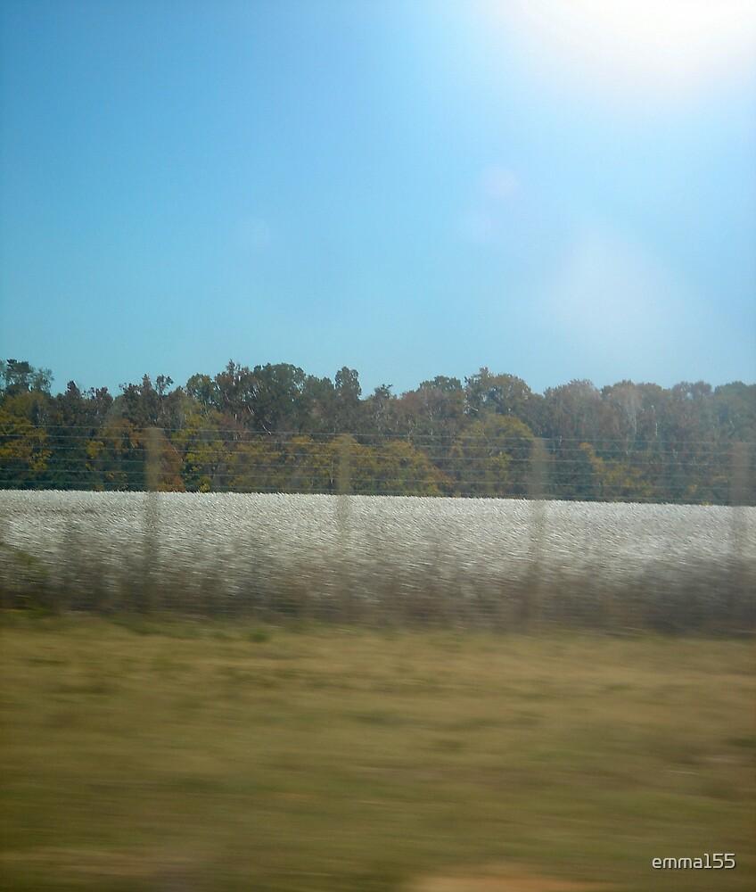 Cotton Fields by emma155
