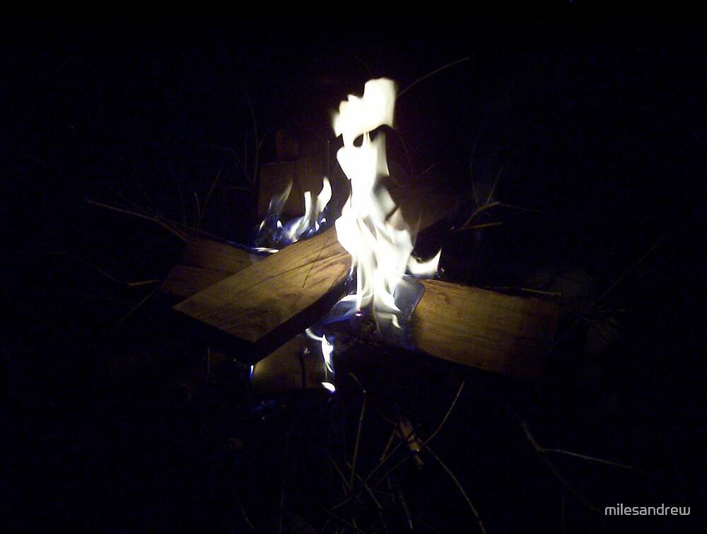 head in fire by milesandrew