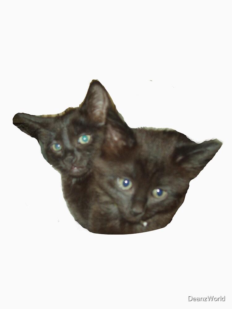 Two Kittens by DeanzWorld