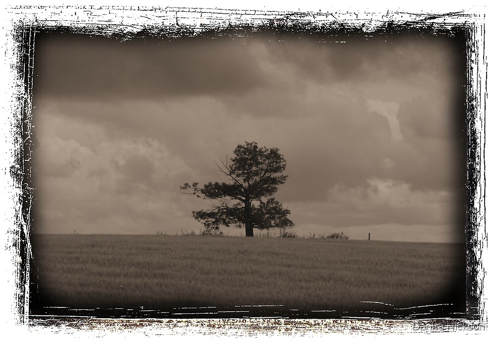 Tree by Danita Hickson