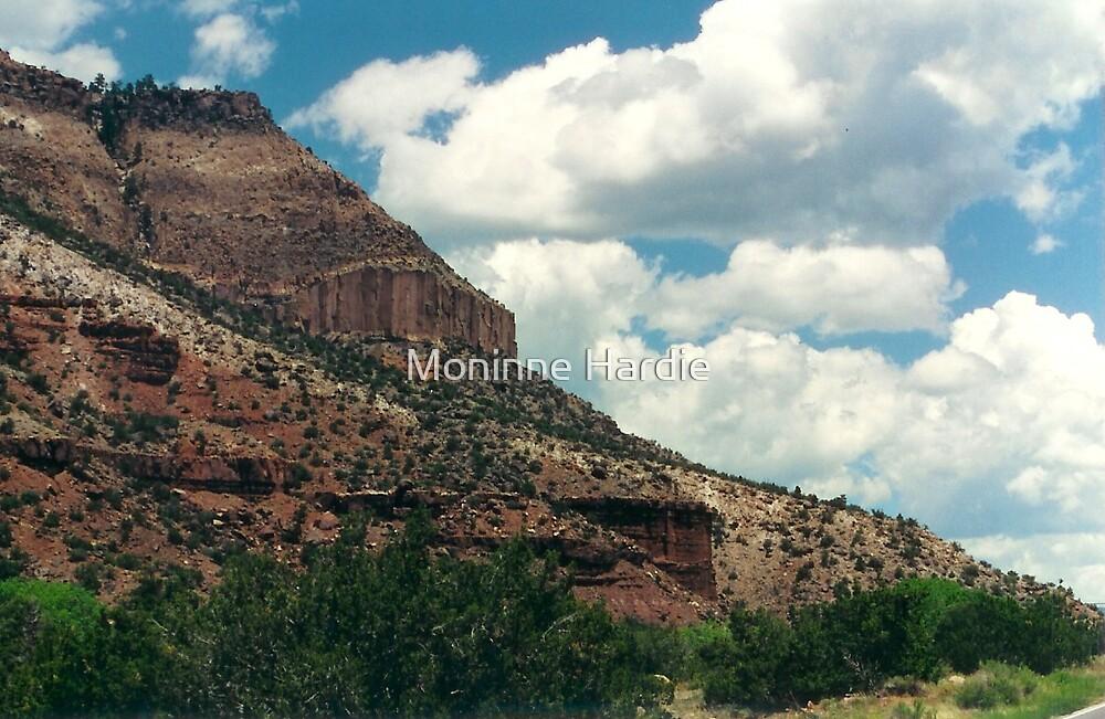 Backroads of NM by Moninne Hardie