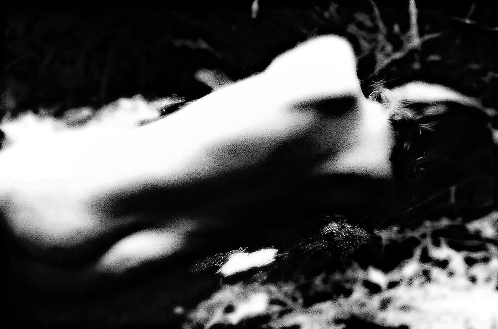 nude by alistair mcbride