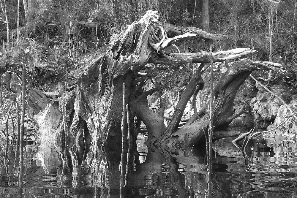 spooky spectre of a tree trunk wallowing in the water by Gaylene Norton