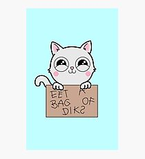 Here's Your Sign - Kitty Cat Says Eat a Bag of Dicks Photographic Print