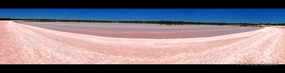 pink lake ultra-wide by Andrew Cowell