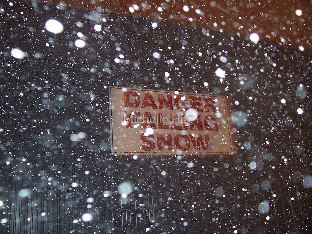 Danger, Falling Snow by Michelle Hitt