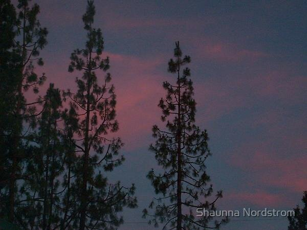 Sunset by Shaunna Nordstrom