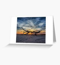 Driftwood Sunset 1 Greeting Card
