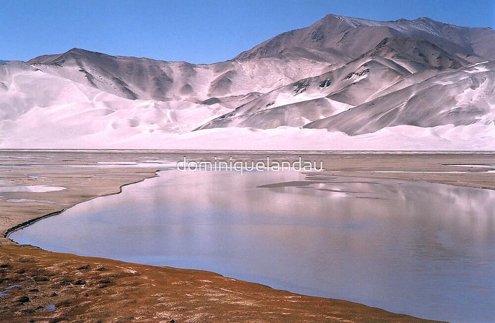 Karakoram  by dominiquelandau