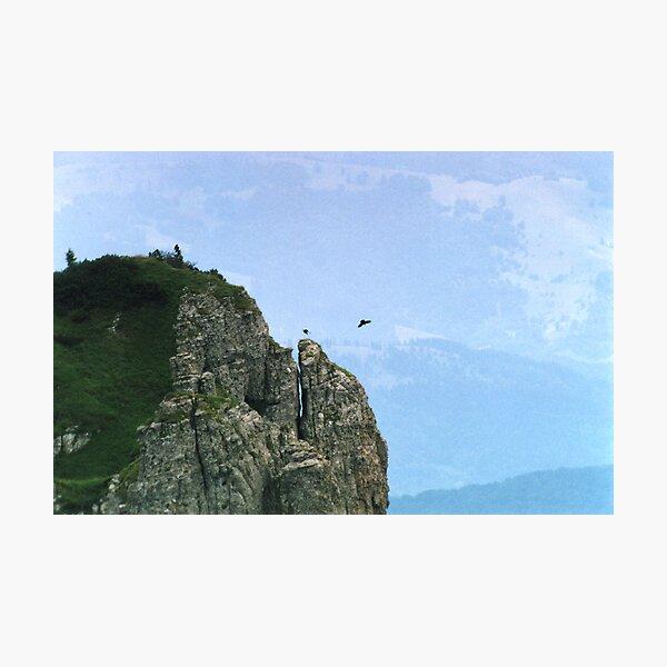 Eagles Photographic Print