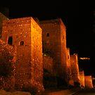 Alcazaba, Malaga at Night by wiggyofipswich