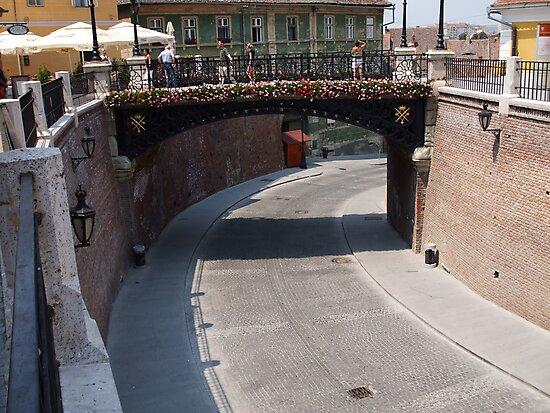 The Bridge of Liars, Sibiu, Romania by Pat Herlihy