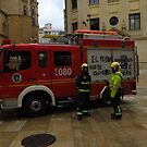 Firemen & Fire Engine, Malaga by wiggyofipswich