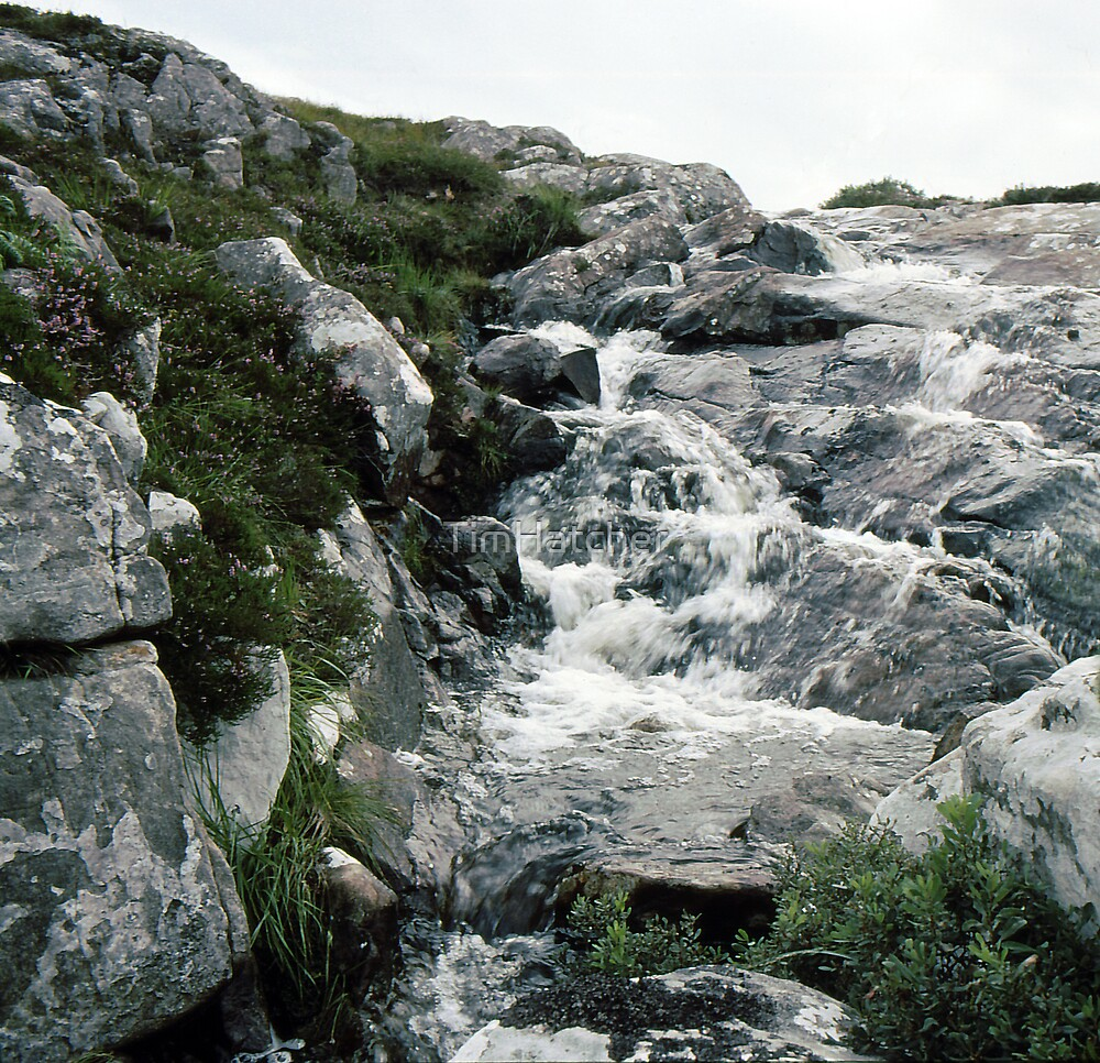 Highland Stream by TimHatcher