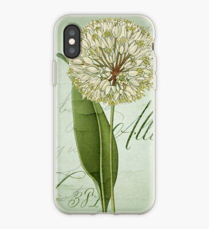 Allium II iPhone Case