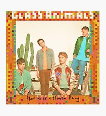 Glass Animals How To Be A Human Being Photographic Print