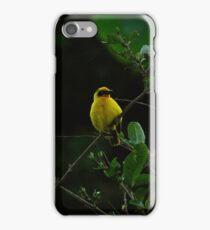 Weaver Bird iPhone Case/Skin