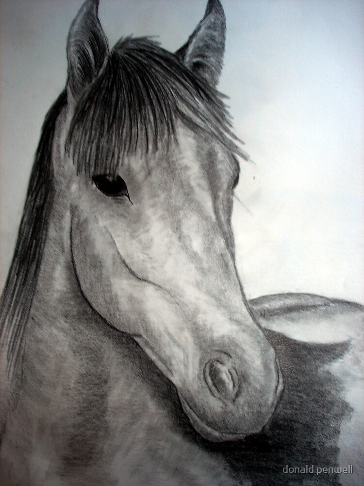 a horse of course by donald penwell