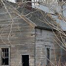 Waterloo Barn by Jill Doyle