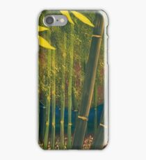 Bamboo - 1 of 2 (diptych) iPhone Case/Skin