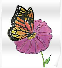 Oil Pastel Butterfly Poster