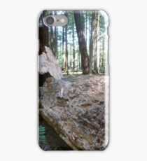 Gifford Pinchot National Forest iPhone Case/Skin