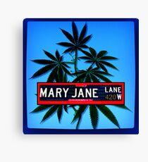 Mary Jane  Lane - 420 Canvas Print