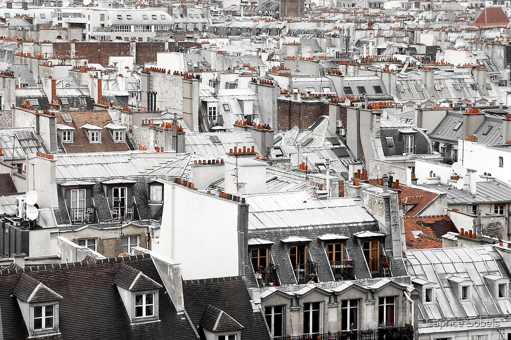 Toiture Parisienne by Caprice Sobels