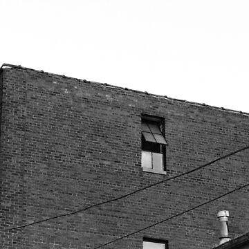 Open Window by merrywrath
