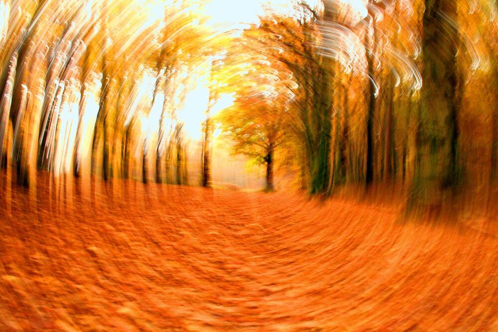 Autumn Twist by Hayley Evans