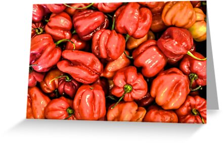 Red Habanero Peppers by Bill Wetmore