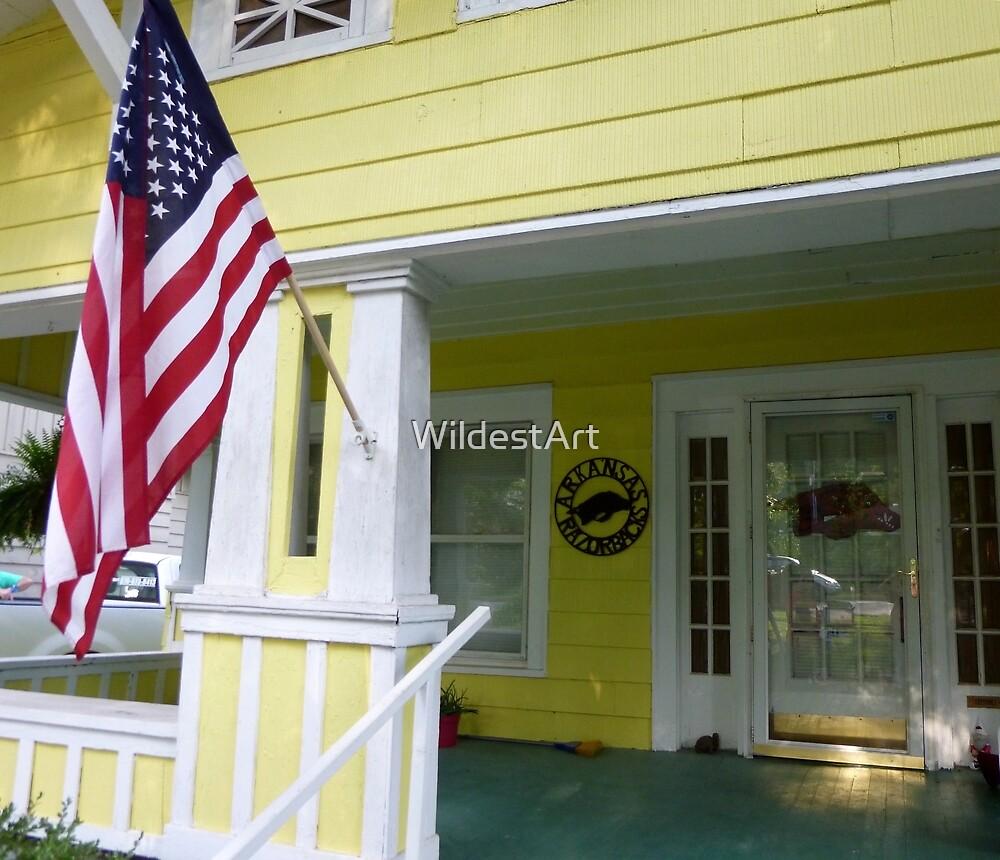America At Home by WildestArt