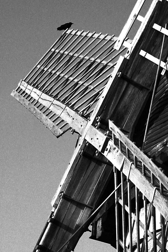 Bidston Windmill 2 by Alan Hawkins