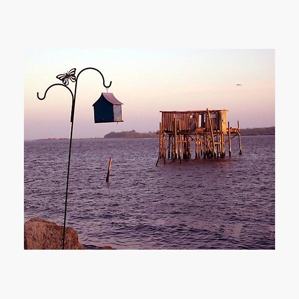 Cedar Key Fish House at Sunset Photographic Print