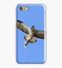 Bird of Prey Flying with Fish iPhone Case/Skin